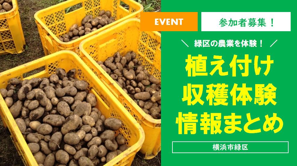 【緑区の農業を体験♪】2021年7月~9月開催!植え付け収穫体験情報まとめ!!<横浜市緑区>