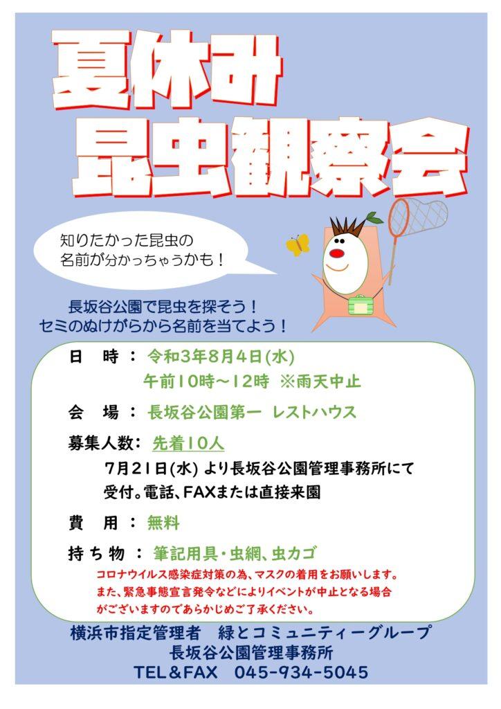 長坂谷公園「夏休み昆虫観察会」